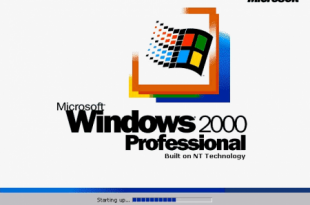 windows 200 NT Professional