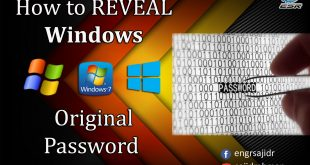How to Reveal Windows Original Password | SAM Inside | ESR